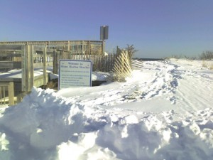 beachpathsnow