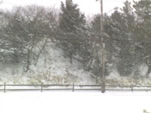 sleddinghills
