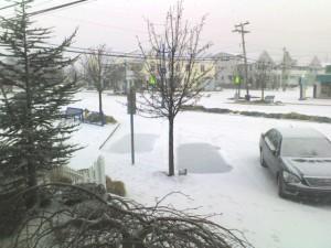 snowon DuneDr