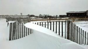snowwave