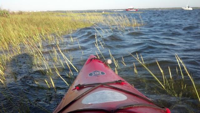 KayakSwim