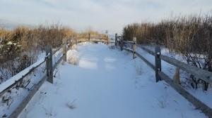 Snowonpath