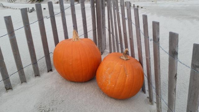 PumpkinSand