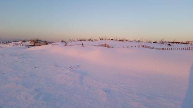 SnowThursday