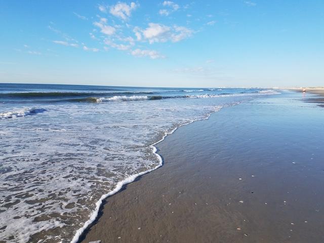 BeachMonday