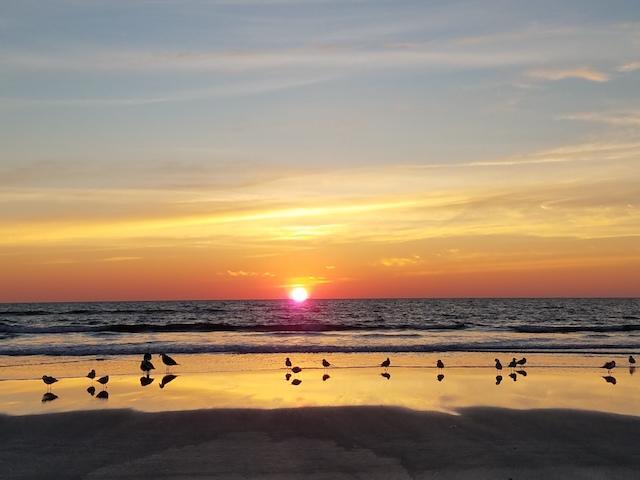 SunriseCrowds